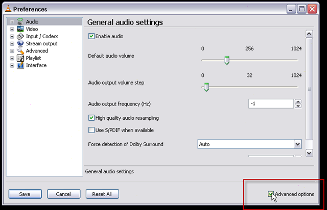 03_audio is selected by default_bottom right_check_advanced options checkbox
