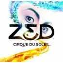 Zed130x130